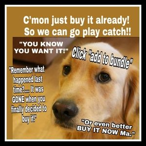Dont make rover wait any longer.  Just buy now!!